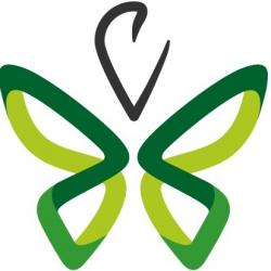 logo echo logos_papillon vert