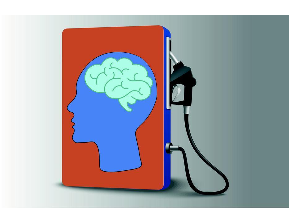 du carburant pour votre cerveau